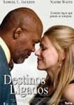 DESTINOS LIGADOS DVD