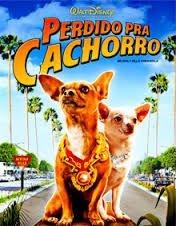 PERDIDO PRA CACHORRO  DVD