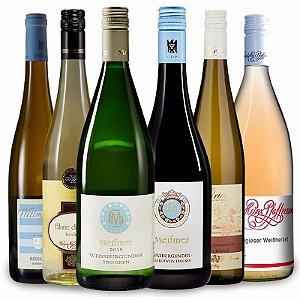 Kit vinhos para Festas 6 gf