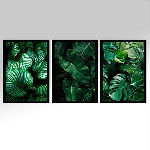 Kit 03 Quadros Decorativos - Folhas Verde Natureza