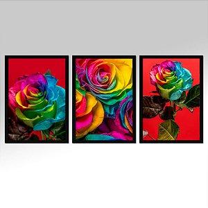 Kit 03 Quadros Decorativos - Rosas Coloridas