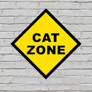 Placa de Parede Decorativa: Cat Zone - ShopB