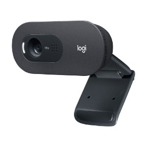 Webcam Logitech C505 HD Webcam 720p