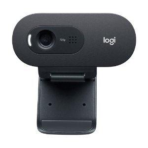 Webcam Logitech C505 HD Webcam 720p