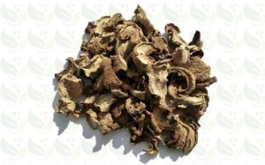 FUNGHI SECO 100g