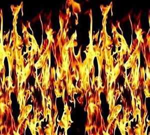 Película - Fire - FR8882