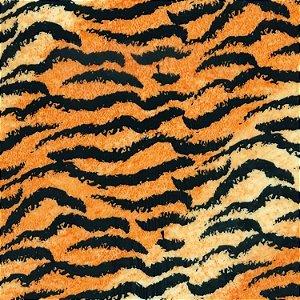 Película - Tigre - TG001