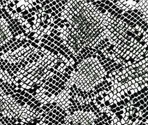 Película - Cobra Preto (Fundo transparente) - SN 012