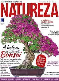 REVISTA NATUREZA ED 385