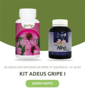 Kit Adeus Gripe - Equinácea + Óleo de Alho