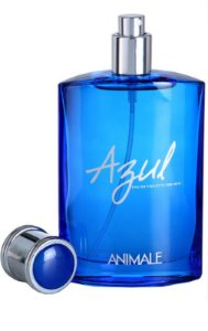Animale Azul For Men Eau de Toilette - Perfume Masculino