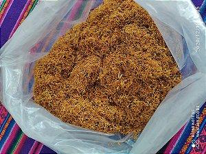Tabaco Virgínia Gold Natural Destalado 01kg