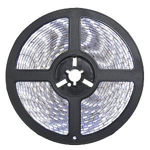 Fita LED Branco Frio 3528 5 metros 24W 12V