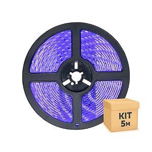 Fita LED Azul 3528 5 metros com Fonte