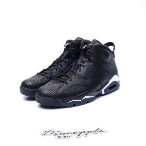 "Nike Air Jordan 6 Retro ""Black Cat"""