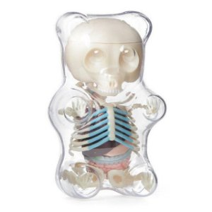 Jason Freeny -  Gummi Bear Anatomy