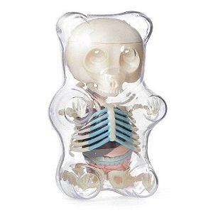 Jason Freeny -  Gummi Bear Funny Anatomy