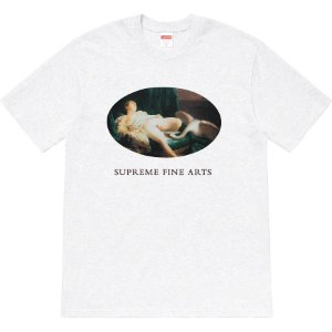 "SUPREME - Camiseta Leda And The Swan ""Grey"""