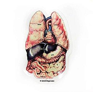 SUPREME - Adesivo FW18 Guts Organs Raw Lungs -NOVO-