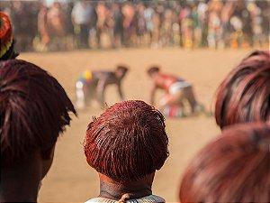 Indio Xingu IV