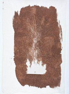 Fogo Van dyke brown I - Silvana Tinelli
