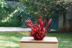 Escultura de cerâmica Coral - Silvana Tinelli