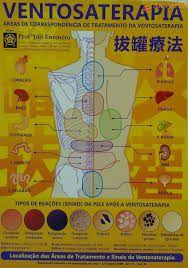 Mapa Ventosaterapia - Prof. Enomoto