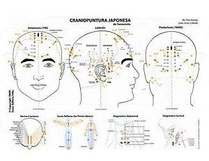 Mapa Craniopuntura Japonesa e Chinesa - Dr. Wu Tou Kwang