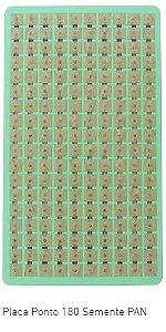 Placa Ponto Semente C/180 Micropore PAN