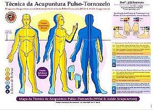 MAPA TÉCNICA DA ACUPUNTURA PULSO-TORNOZELO - JÓJI ENÓMOTO