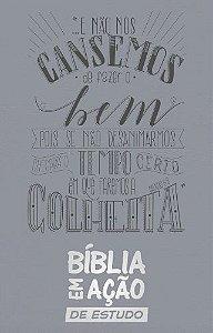 Bíblia em Ação de Estudo - Luxo Cinza