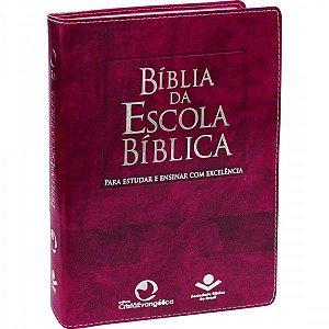 Bíblia da Escola Bíblica (Rosa)