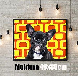 Q!Pet Moldura Preta 40x30cm