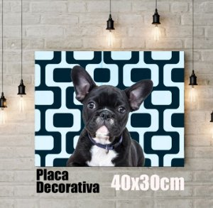 Q!Pet Placa Decorativa 40x30cm