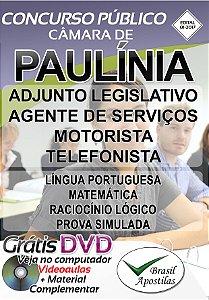 Paulínia - SP - 2017 - Apostila Para Nível Médio