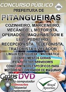 Pitangueiras - SP - 2019 - Apostilas Para Nível Fundamental, Médio e Superior