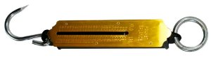 Balança Peixeira de 100kg FS-100 - Western