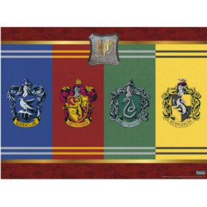 PAINEL DE TNT DECORATIVO FESTA HARRY POTTER - 1,40M X 1,03M - FESTCOLOR