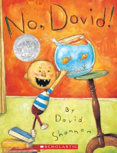 NO, DAVID: BOARDBOOK