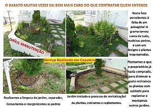 Paisagismo profissional! Utilizando plantas, flores, terra e adubo próprio para região!
