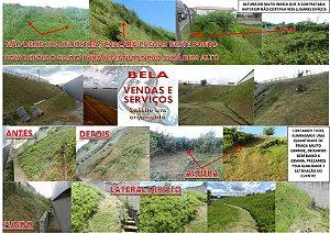 Manutenção área verde em indústrias, condomínios, postos de gasolina, sítios, fazendas, chácaras e etc.