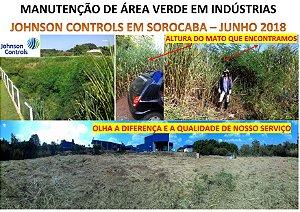 Manutenção de área verde de indústrias em Araçariguama e Sorocaba. Atendemos outras cidades.