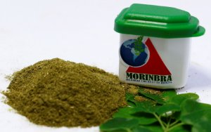 Moringa - 60 Flasconetes de 04g
