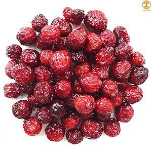 Cranberry Desidratado 1 Kg