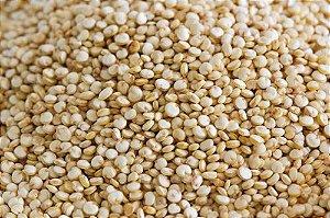 Quinoa Grãos 1 Kg