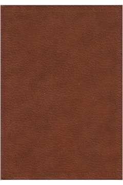 Livro Minna - Biblioteca dos Prêmios Nobel de Literatura Autor Karl Gjellerup (1971) [usado]