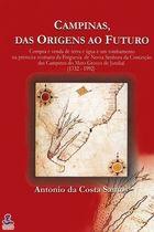 Livro Campinas, das Origens ao Futuro Autor Antonio da Costa Santos (2002) [usado]