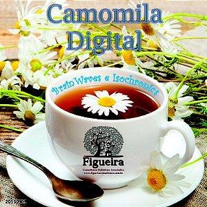 MP3  Camomila Digital  - 30 minutos | BemZen! Figueira Consultores