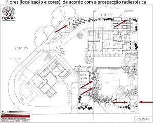Análise Radiestésica Ambiental - Área EXTERNA / Jardim  | BemZen! Figueira Consultores