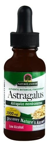 Extrato de Raiz de Astragalus, Alcóol Orgânico, Nature's Answer, 30 ml
